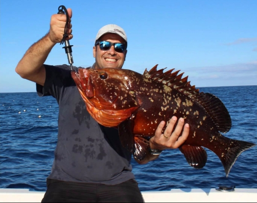 azores sports fishing
