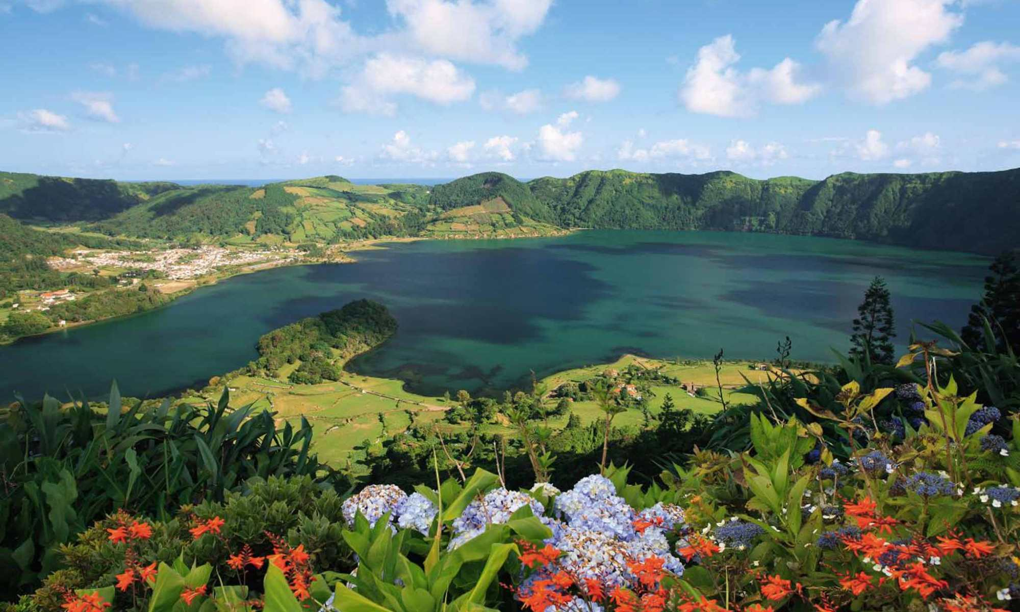 the azores wildlife and natures